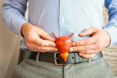 Prostatitis a fiatal férfiak kezelésében